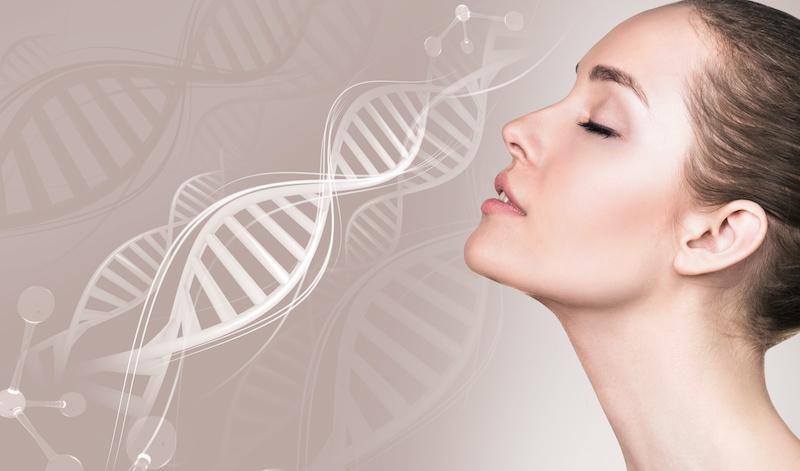 hud genetik