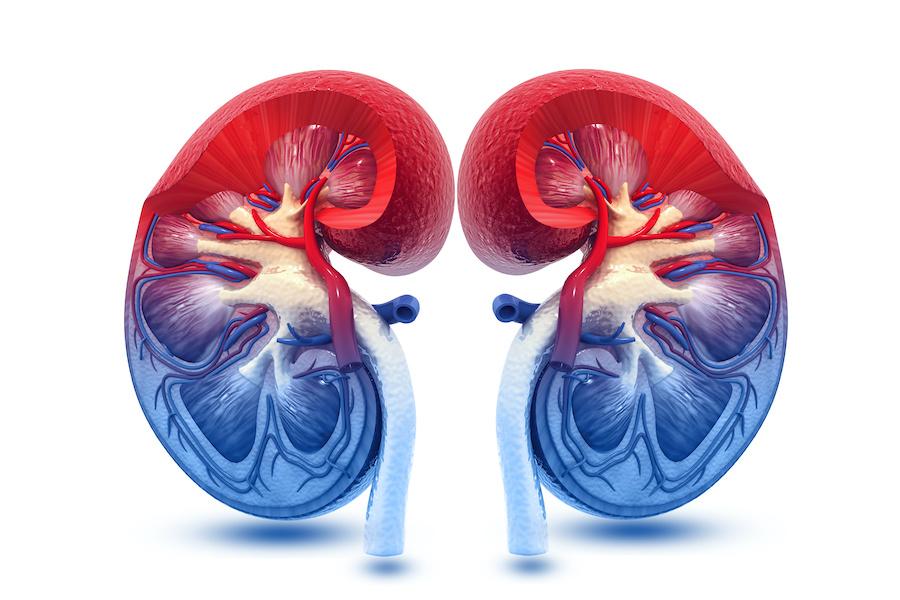 kidney-transplant-skin-diseases